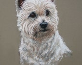 West Highland White westie dog fine art Limited edition print from an original soft pastel sketch
