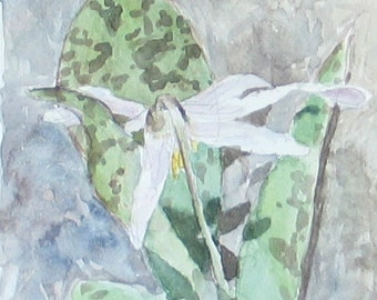 "Spring Flower -Watercolor Nature Painting 8x9"" Original Artwork, landscape art, impressionist"