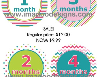 SALE - Modern Baby Girl Monthly Stickers - Month Stickers 1 to 12