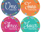 Monthly Baby Girl Milestone Stickers, First Year Stickers, Baby Month Stickers, Baby Shower Gift, Personlized Baby Gift Stickers 602