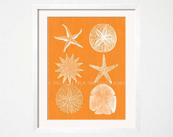 Orange Wall Art, Starfish Print, Sand Dollar Art Print, Seashell Wall Art, Beach House Art, Orange Wall Art, Kitchen, Orange Decor