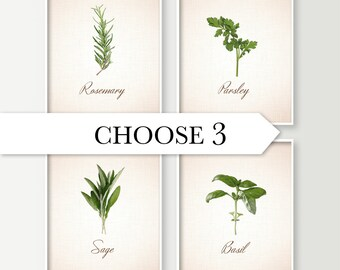 Kitchen Wall Decor - Choose 3 Herbs Kitchen Art Prints - Dining Room Decor - Culinary - Food Art - Cooking - Basil Sage Rosemary Parsley