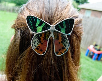 FREE SHIPPING  Real Sunset Moth Wings Encased in Hand Cut Glass and Soldered Hair Barrette