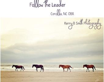 Wild Horses Walking On the Beach Fine Art Photography Print Corolla, NC OBX