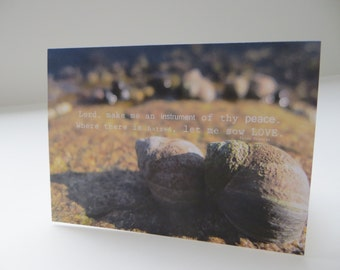 Sow Love Photograph - 4x5.5 - Art Recycled Paper