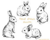 Digital Clipart, Doodle Clipart, Easter Bunnies, Bunny Clipart