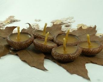 Woodland Acorn Candles  -- 50 Floating Acorn Cap Candles