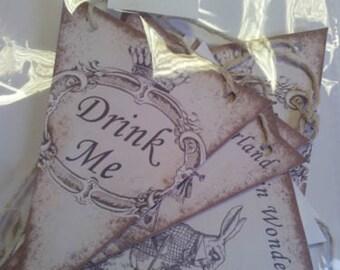 Alice in Wonderland Paper Bunting - Printed on 225gsm Card - 2m long - Design 1
