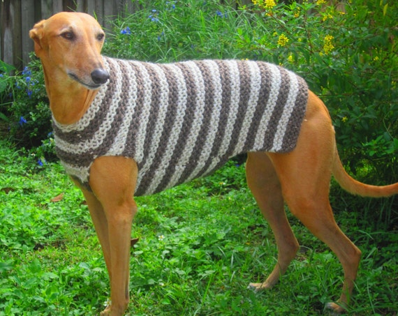 Boxer Dog Coat Knitting Pattern : Unavailable Listing on Etsy