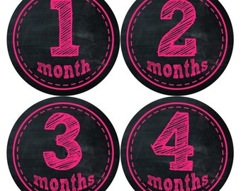 Baby Girl Month Stickers Monthly Baby Sticker Monthly Baby Stickers Baby Month Stickers Milestone Stickers Photo Stickers 147