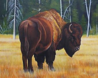 Buffalo bison American wildlife Yellowstone Teton Native Indian wild west western art cowboy cowgirl ranch contemporary original painting