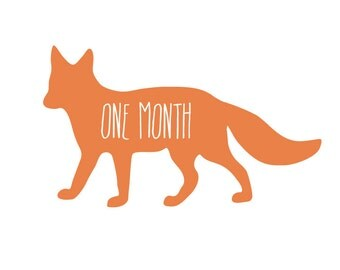 Monthly Baby Stickers - Fox Month to Month Bodysuit Stickers