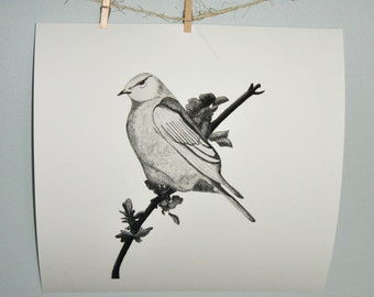 Bird Sitting on Branch Art Print