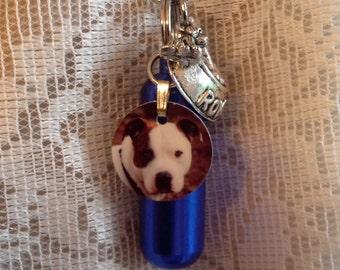 DOG Memorial Jewelry, PET, Cremation Urn, Add-a-Photo, *BONUS* Purse clip, Necklace, & Keychain