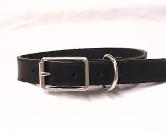 Bonna Allen Latigo Dog Collar
