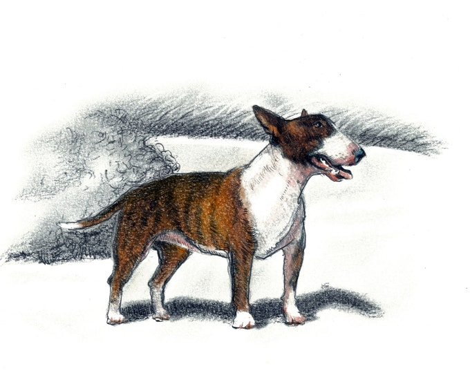 Bull Terrier Dog Art Vintage Style Print