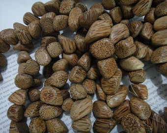 smooth edge, tumbled side cut pointed nugget beads, coconut wood beads, about 15x25mm, 30 beads