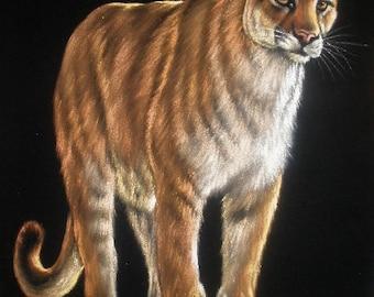Wild cougar black velvet oil painting handpainted signed art