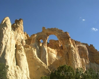 Photography, Arches, Utah, Gold Orange Arch, Green Trees, Blue Sky, Fine Art Print, Landscape, 5x7, 8x10, 11x14, Home Decor, Wall Art
