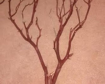 "15 (18"") All Natural Manzanita Branches - Perfect For Country Rustic Wedding Centerpieces And Decorations"