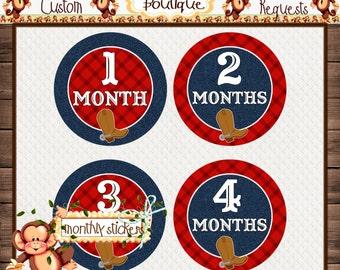 Monthly Baby Milestone Stickers Baby Shower Gift Bodysuit Baby Stickers Monthly Baby Stickers Baby Month Sticker {M190}