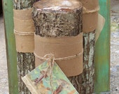Grow your own gourmet Shiitake mushrooms! These logs are innoculated and ready to begin producing mushrooms.