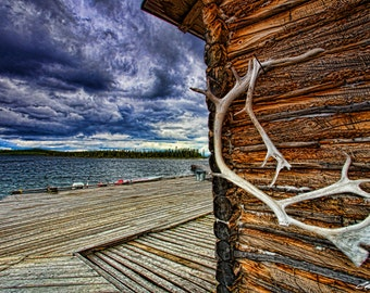 Caribou Antler on Cabin