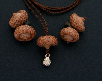 acorn necklace with brass pod charm - natural jewelry - small necklace - delicate - earthy - woodland