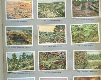 "French ""Types of Landscapes"" Stickers  Page from Children's Book 1930s Stamps Labels ""Types de Paysages""   s23"