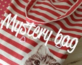 Cat Mystery Bag - Cute Kitty theme Items all in One Bag