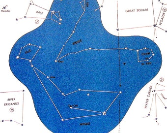 Stars Constellation Chart - Fishes, Whale - 1960's Vintage Print 8 x 11