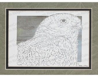 Hawk Papercutting- Handcut Original