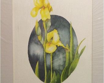 Yellow Irises Original Watercolor Painting