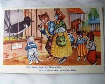 Vintage. Dressed Cats . Very old Dutch Postcard. A day at the zoo. 1950