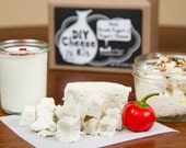 Feta, Greek Yogurt & Yogurt Cream Cheese DIY Kit- 8 batches