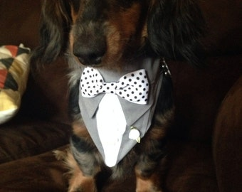 Wedding Party Tuxedo Bandana Gray Suit Sz XS S M