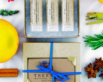 Set of 3 All-Natural Lip Balms - Gift Sets Under 15 - Lip Balm Set - Unisex Lip Balms - Birthday - Stocking Stuffer - Secret Santa