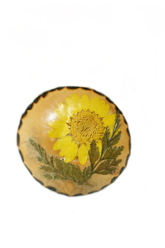 Gourd Pin, Yellow Daisy Gourd Brooch, Natural Jewelry, Wearable Flower Art, Nature Collage Gourd Pin