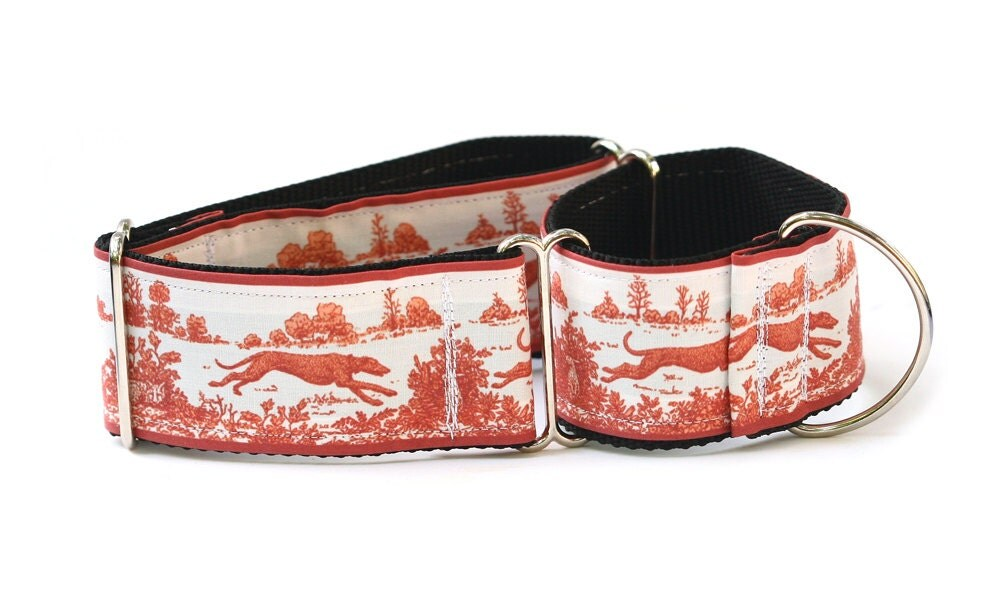 Il Fullxfull Bupf on Lupine Dog Collars