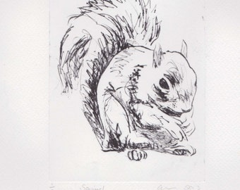 Squirrel Art Print Drypoint Limited Edition Original Hand-Pulled Print Animal