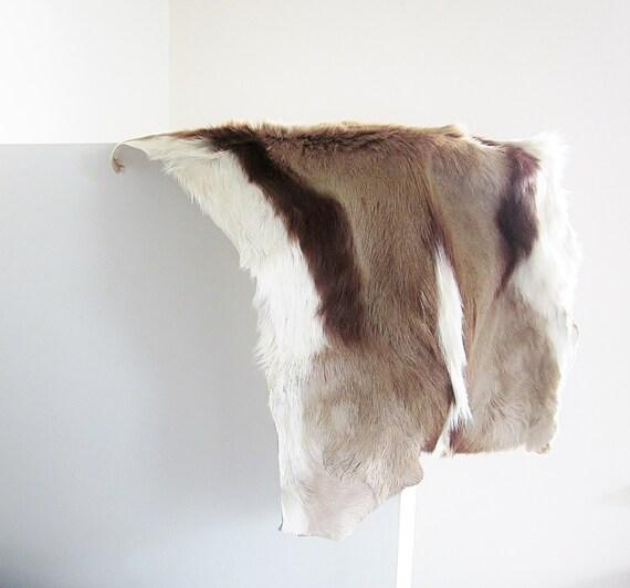 Vintage Animal Pelt Springbok Fur Tanned Hide Skin Rug Throw
