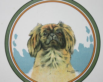 Pekinese Dog Print Vintage French
