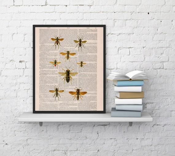 Spring Sale Queen bee Print on Dictionary Book - Butterfly Art on Upcycled Dictionary Book - Wall Art Home Decor BPBB115