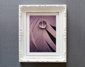 feather photograph pearl water drop photo fine art photography wall decor vintage color purple