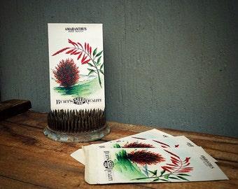 ONE Seed Packet | Unused NOS Antique (c.1910s) Flower Seed Envelope | Amaranthus Garden Seeds | Paper Goods | Wedding Favor | Scrapbooking |