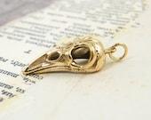 Bird Skull Pendant - Cast Bronze Jewelry Charm