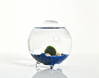 Marimo Ball Glass Orb Vase - Marimo Moss Ball Globe, Glass Orb Aquarium, Blown Glass Sphere Aquarium, Japanese Decor, Japanese Decoration