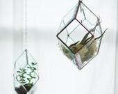 NEW Iridis Prism Terrarium, medium -- for air plant terrarium or small succulent -- stained glass -- terrarium supplies -- eco friendly
