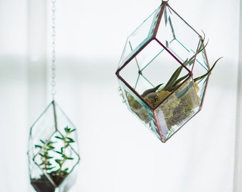 Iridis Prism Terrarium, medium -- for air plant terrarium or small succulent -- stained glass -- terrarium supplies -- eco friendly