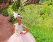 BLUSH  Couture Flower Girl  Corset Tutu Dress  SIZES 12M - girls 7